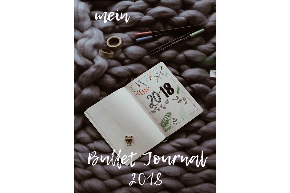 Lifestyle // Mein Bullet Journal Set Up 2018 und ein Rückblick auf 2017